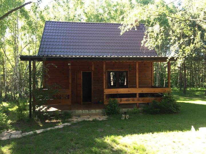 Przytulny drewniany domek na wsi