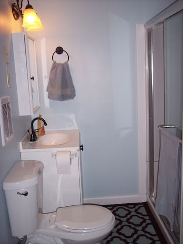 This bathroom is has a glass door, walk in shower, stool and sink with a medicine cabinet above it for your storage convenience while you are here.