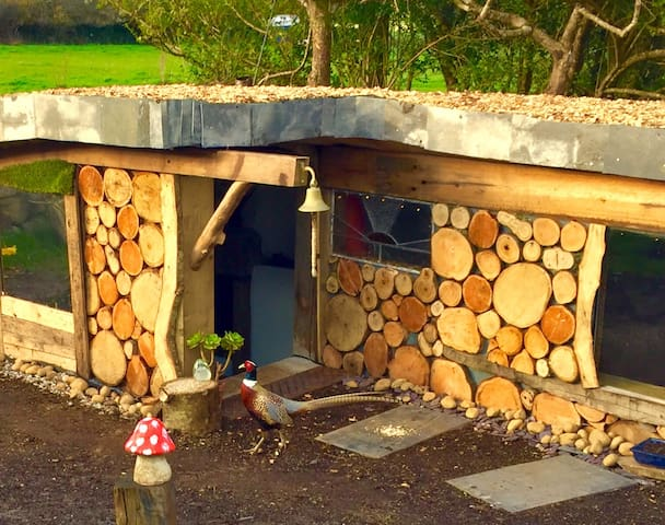 Cosy garden Hideaway with fire place  - St. Ives