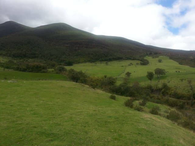 Pasochoa  Moutain - Andes