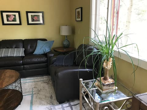 Apt 1.5 miles from town on bus route