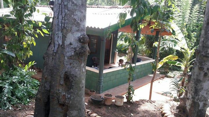 Green Life Generation Cottage