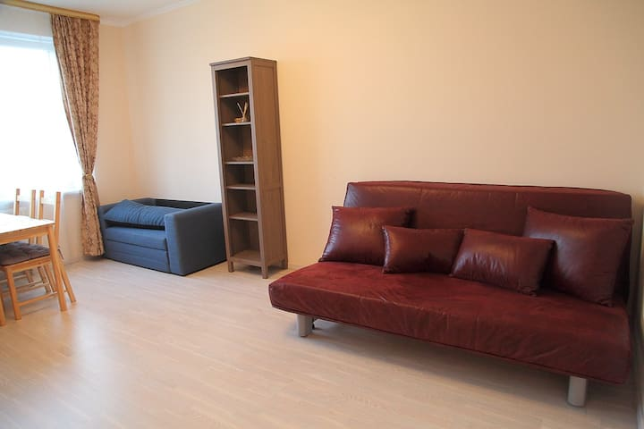 big living room with a large sofa-bed and a single sofa-bed