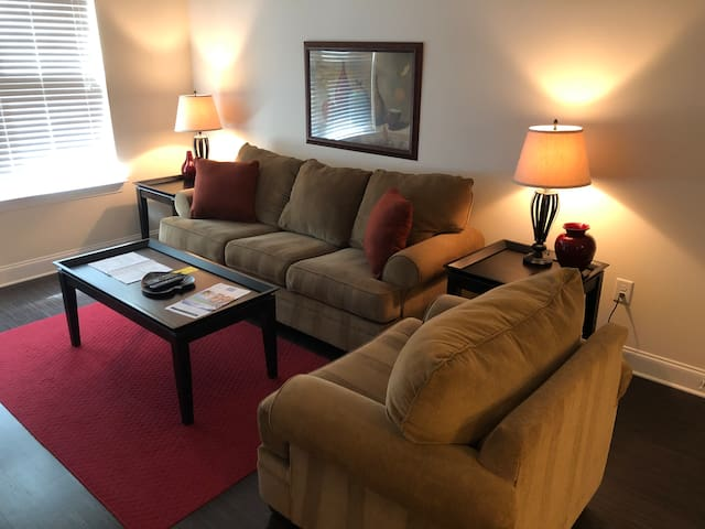 Southpark 1 Bedroom furnished apartment home