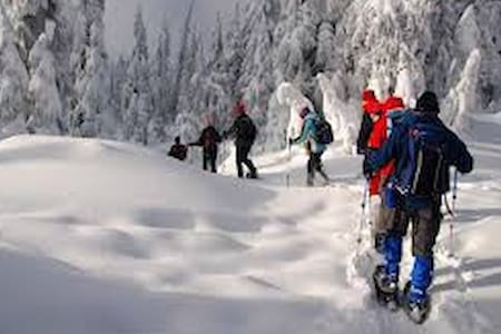 SNOW shoeing and chalet style accommodation - Bansko