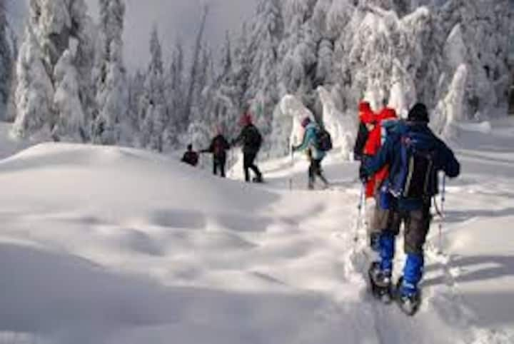 A-SNOWshoeing OR chalet style at Disalitsa, Bansko