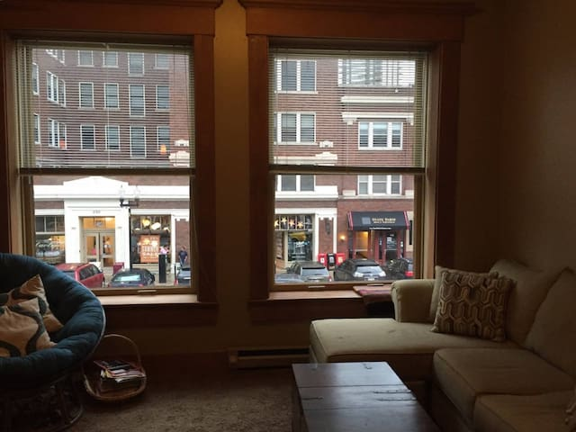Charming Mass Ave Apt with Parking - Indianapolis - Condominio