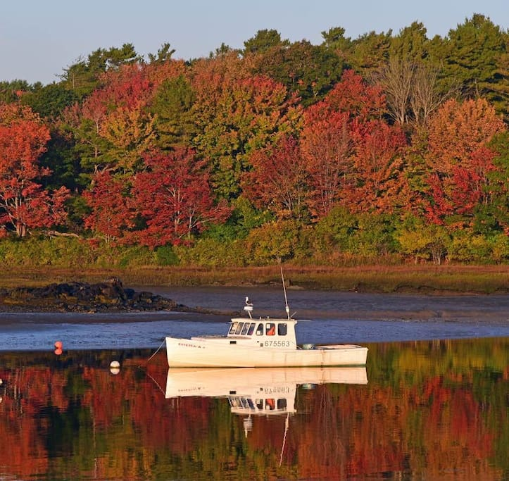 The foliage is beautiful in Kennebunk come enjoy