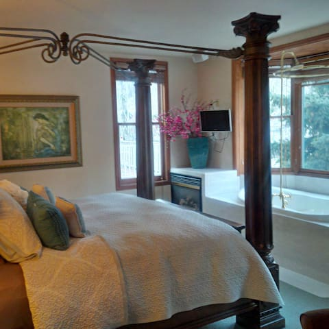 Wildwood Canyon Inn- Silver Meadows - Telluride - Huis