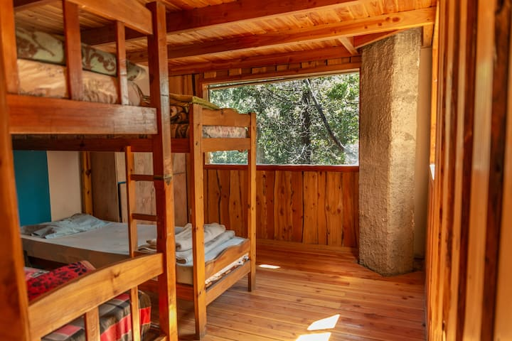 Cama en Habitación compartida, Casa del bosque