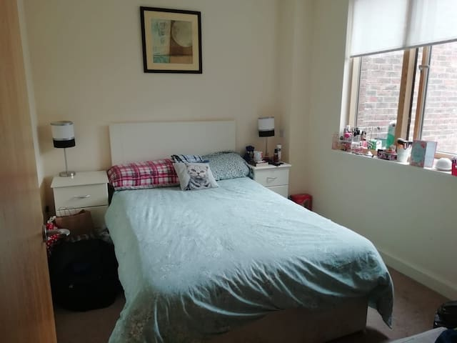 2/3 weeks stay in Double room in Dublin