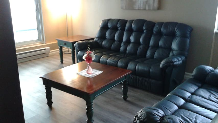 2 bedroom apartment in lougheed mall