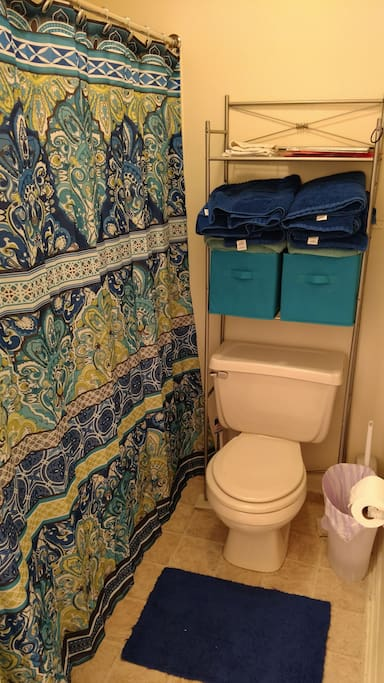 Bathroom- towels and TP included!