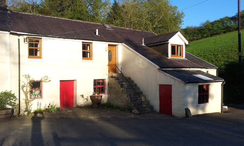 flat in the welsh country side - Capel Iwan - Leilighet