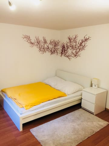 Großes Zimmer, zentrale ruhige schöne Lage