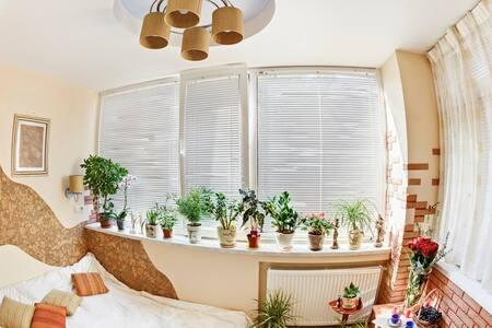 Romantic riverside nest - Marlow - Apartmen