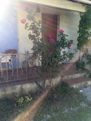 Maison avec jardin et terrasse - Saint-Cannat - 一軒家