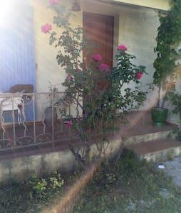 Maison avec jardin et terrasse - Saint-Cannat