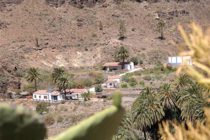 Ecotaracanaryislands