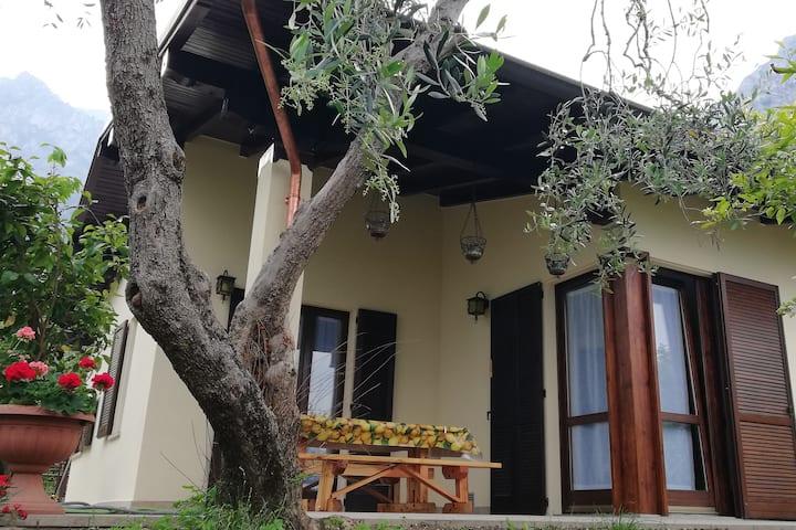 CASA CAMILLA  Ferienwohnung - Holiday house