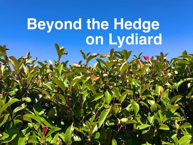 Beyond the Hedge on Lydiard - Ballarat North