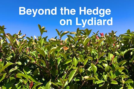 Beyond the Hedge on Lydiard