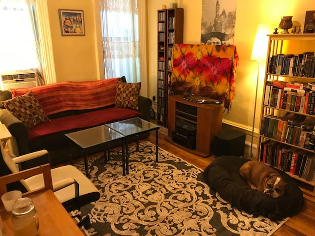 Your Cozy NYC Private Room Getaway!