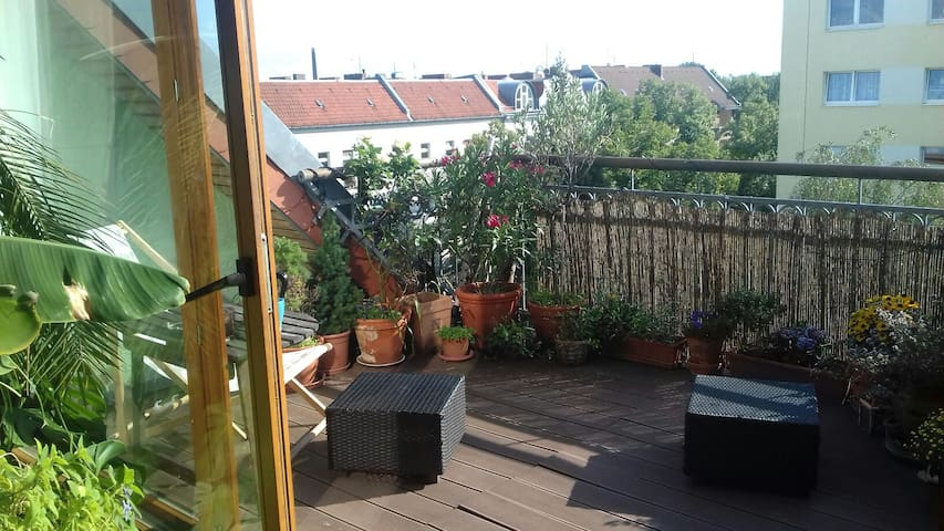 Privatzimmer in heller Wohnung mit Dachterrasse