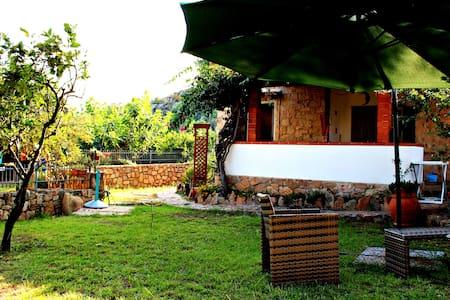 Casa Navarrese