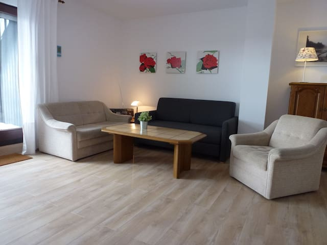 2-room apartment 61 m² Schwarzwaldblick for 4 persons in Schonach