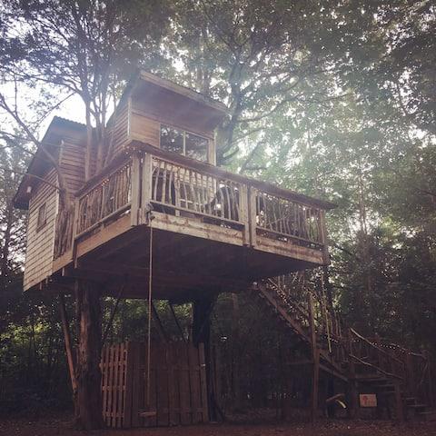 The Hummingbird Treehouse