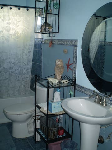 The main bathroom features a shower and bath, toilet, and a sink.  There is also a half bath available.