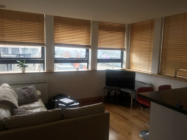 Spacious Flat - Birmingham City Centre