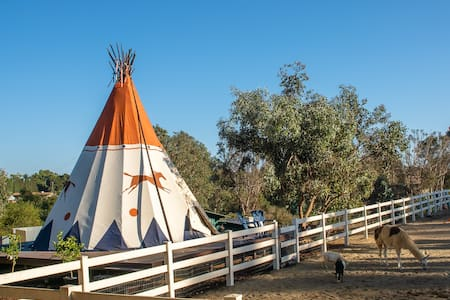 Tipi glamping on a scenic ranch