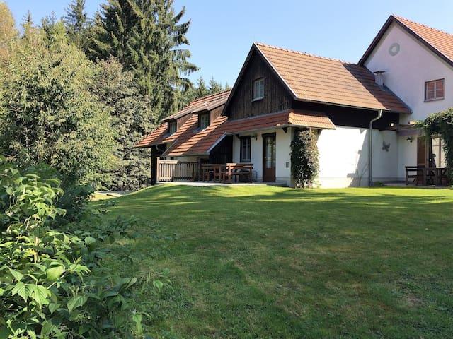 Ferienappartement in Litschau (Waldviertel) am See