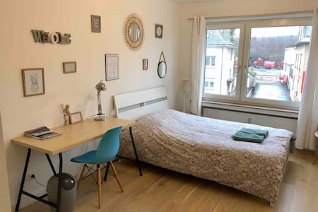 Gemütliches Zimmer in Luxemburg