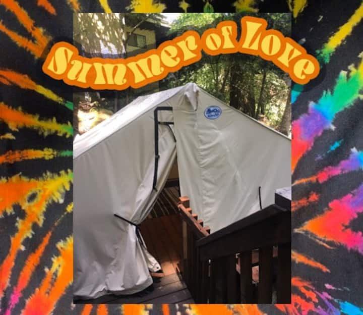 Glamping tent in the Redwoods