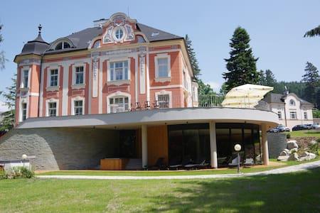 Wellness & Spa hotel Villa Regenhart**** - Jeseník - Villa