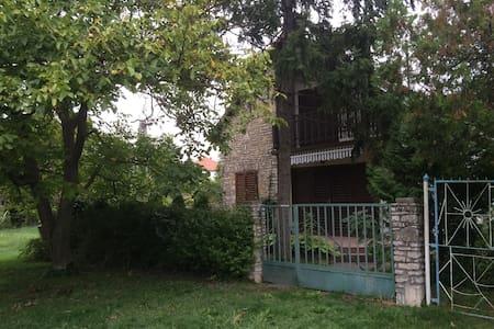 Kenesi álom nyaralás - Balatonkenese