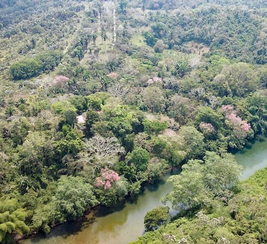 View of our house and property across the Belize River (photo taken by drone)