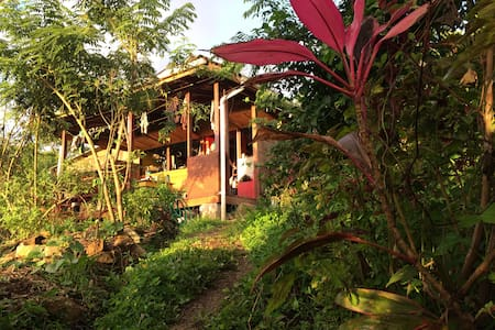 Jungle Off-grid Permaculture Farm & Hostel