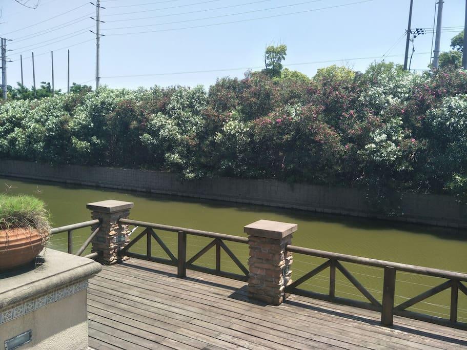 楼前是一条通海的小河,每天都有人垂钓免费的哦,对岸是茂密的夹竹桃林,花期超长,四季葱绿