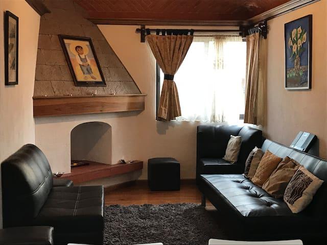 La sala acogedora y chimenea para los días de frío