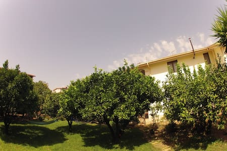 Your cozy flat in rural south Sardinia
