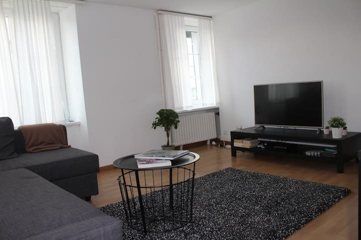 Cosy and modern apartment in friendly Thalwil