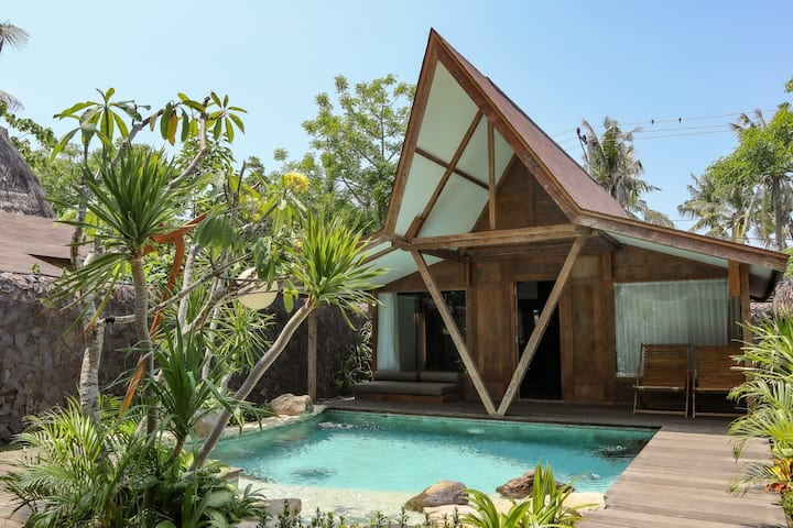 Luxurious Villa with private pool (free bikes)