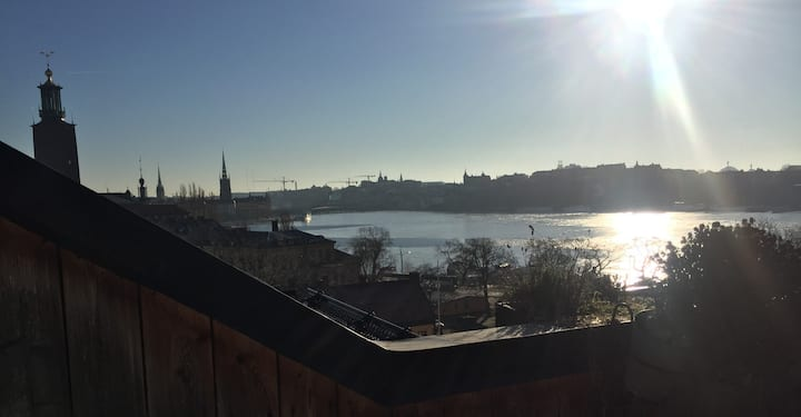 Kungsholmen - Cozy attic with stunning views