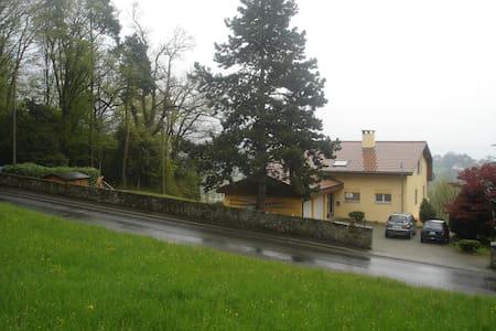 Villa 2 étages 4 chambres 2 salons - Corsier-sur-Vevey - Hus