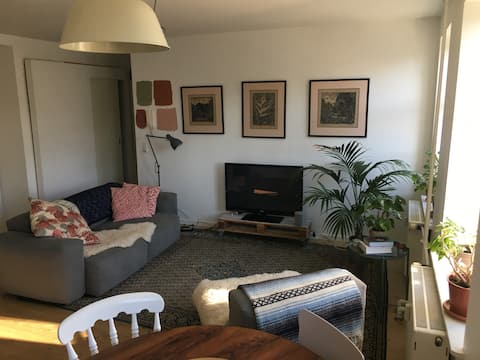"""""""Sunny B"""" cute apartment in the heart of Vesterbro"""