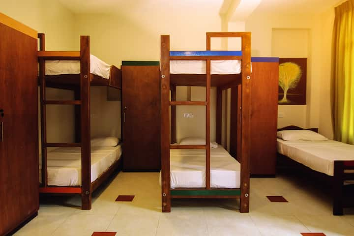 The Youth Hostel - Its a Youth Fame - Ahangama